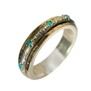 Silver Gold Spinning Ring